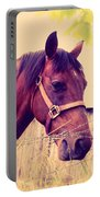 Vintage Horse Portable Battery Charger