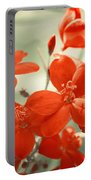 Vintage Red Flowers Portable Battery Charger