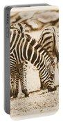 Vintage Zebras Portable Battery Charger