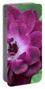 Violet Rose And Buds Portable Battery Charger