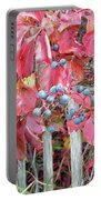 Virginia Creeper Fall Leaves And Berries Portable Battery Charger