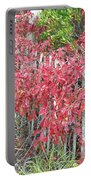 Virginia Creeper Vine On Dune Fence - Fall Colors Portable Battery Charger