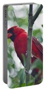Vision In Red Portable Battery Charger