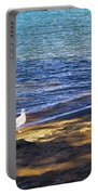 Visitor - Lake Tahoe Portable Battery Charger