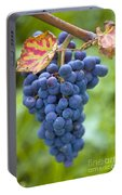 Vitis Portable Battery Charger