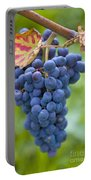 Vitis Portable Battery Charger by Heiko Koehrer-Wagner