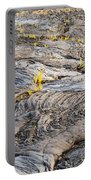 Volcano Regeneration Portable Battery Charger