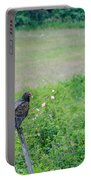 Vulture Fence Line 3 Portable Battery Charger
