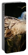Vulture Resting In The Sun Portable Battery Charger