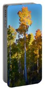 Aspens In Vertical Portable Battery Charger