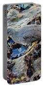 Wadering Tattler At Low Tide Portable Battery Charger