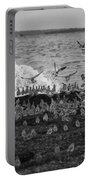 Wading Birds-black And White V2 Portable Battery Charger