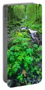 Wahkeena Falls In The Columbia River Gorge Portable Battery Charger