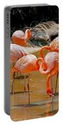 Waikiki Flamingos Portable Battery Charger
