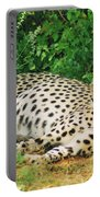Waiting For Baby Cheetahs Portable Battery Charger