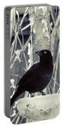 Waiting Grackle Portable Battery Charger