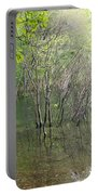 Walden Pond Portable Battery Charger
