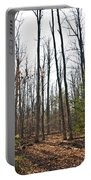 Walk In The Woods2 Portable Battery Charger