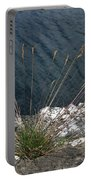Flowers In Rock Portable Battery Charger