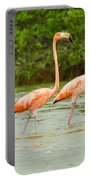 Walking Flamingos Portable Battery Charger