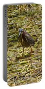 Walking On The Reeds Portable Battery Charger