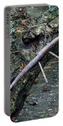 Walking Stick Portable Battery Charger