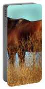 Walking Tall Portable Battery Charger by Karen Wiles