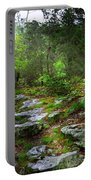 Walking With Light Portable Battery Charger