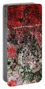 Wall Abstract 38 Portable Battery Charger