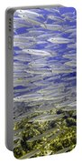 Wall Of Silver Fish Portable Battery Charger