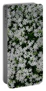 Wallflowers 2  Portable Battery Charger