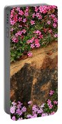 Wallflowers 3 Portable Battery Charger