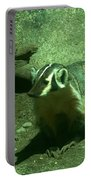 Wandering Badger Portable Battery Charger by Jeff Swan