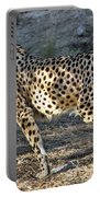 Wandering Cheetah Portable Battery Charger