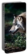 Wandering Wolf Portable Battery Charger