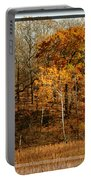 Warm Autumn Glow Portable Battery Charger