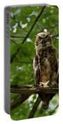 Warm Young Great Horned Owl Portable Battery Charger