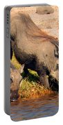 Warthog Family Portable Battery Charger