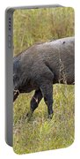 Warthog Portable Battery Charger