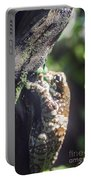 Warty Tree Frog Portable Battery Charger