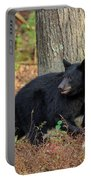 Wary Black Bear Portable Battery Charger