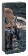 Wary Fox Portable Battery Charger by Bianca Nadeau