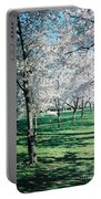 Washington Dc Cherry Blossoms Portable Battery Charger