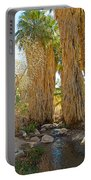 Washingtonian Fan Palms With Large Skirts In Andreas Canyon-ca Portable Battery Charger