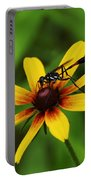 Wasp On A Susan Portable Battery Charger