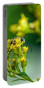 Wasp Portable Battery Charger
