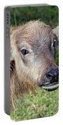 Water Buffalo Calf Portable Battery Charger