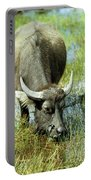 Water Buffalo Portable Battery Charger