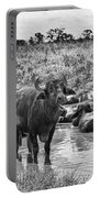 Water Buffaloes-black And White Portable Battery Charger