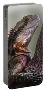 Water Dragon Portable Battery Charger